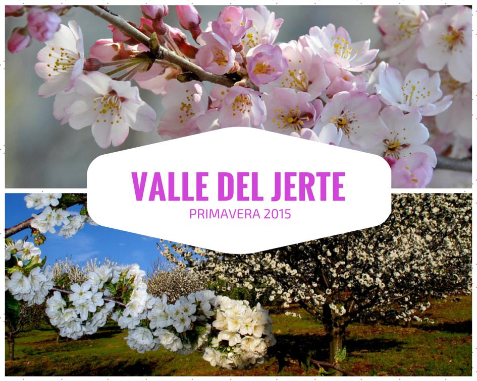 primavera-2015-valle-del-jerte