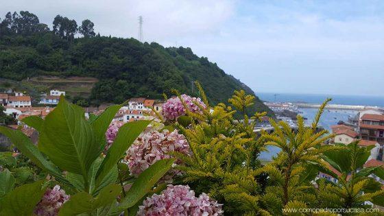 vegetacion y flores de cudillero